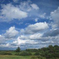летние облака :: Елена