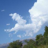 Облака, белогривые лошадки... :: Андрей Солан