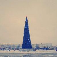 Зима 2014 :: Виктория ***