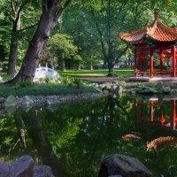 Японский садик :: Максим Шинкаренко