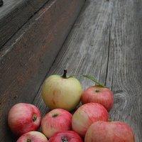 молодильные яблочки :: Алина Леликова