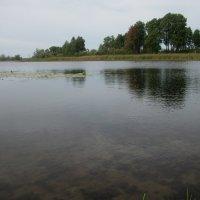 Река :: Анна Наумова