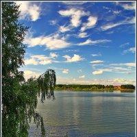 на Можайском водохранилище :: Дмитрий Анцыферов