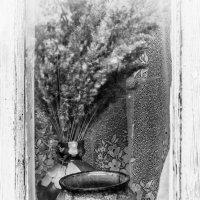 По ту сторону окна... :: Владимир Голиков