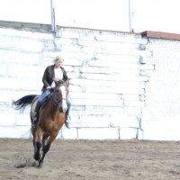 Занятие в конной школе :: Наталия Макарычева