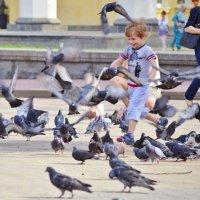Ребенок и голуби 2 :: Дмитрий Бабаев