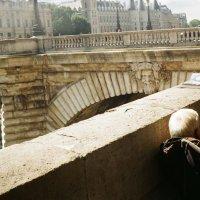 Париж :: Настя Левченко