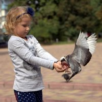 Ручной голубь :: Сергей Кондратович