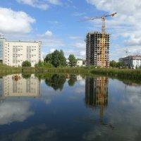 Озеро Харовое :: Наиля