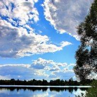 Земное отражение мгновений... :: Лесо-Вед (Баранов)