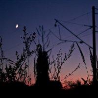 Ночь в Затоке :: Наталья Довбыш