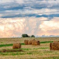 Надвигающаяся буря. ( Если присмотритесь внимательно, то заметите в центре облаков зловещее лицо). :: Анатолий Клепешнёв