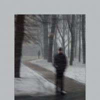 """""""Вдоль по улице метелица метёт..."""" :: sv.kaschuk"""