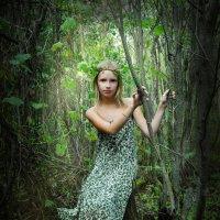 сказка начинается... :: Вероника Любимова