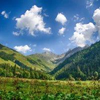 Август в горах :: Aine Lin