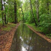 Начало осени в парке IMG_7737 :: Андрей Лукьянов