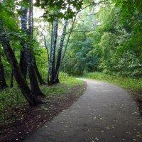 Начало осени в парке IMG_7767 :: Андрей Лукьянов
