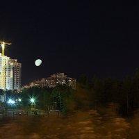 ночной город :: Олег Петрушов