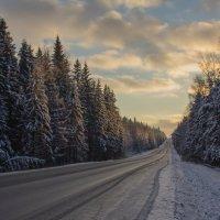 Зимняя дорога :: Ольга Бурда
