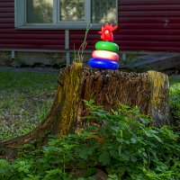 Забытая игрушка :: Sergey Kuznetcov