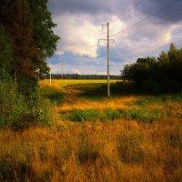 Пахнет травой! :: Григорий Кучушев