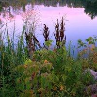 Краски сентября :: Евгений Юрков