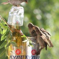 Неблагополучная семья :: Вячеслав