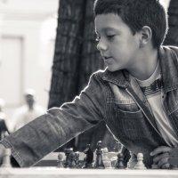 шахматы на бульваре -2 :: Максим Должанский