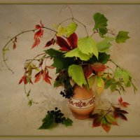 Два винограда :: Елена Шемякина