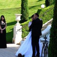 свадьба :: evgeni vaizer