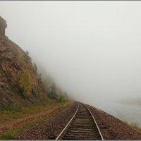 В туман..... :: Николай Елисеев