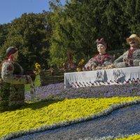 Виставка квітів :: Дмитрий Гончаренко