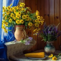 Утро с  вареной кукурузой :: Ирина Приходько