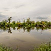 На рыбалке .. :: Жанна Мальцева