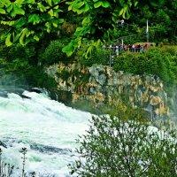 на Рейнском водопаде :: Александр Корчемный