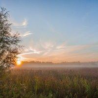 Восход солнца ранним утром :: Николай Алехин