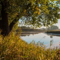 Озеро :: Николай Алехин