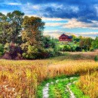 Домик в деревне :: Андрей Куприянов
