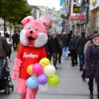 Прогулка с розовым зайцем.. :: zoja