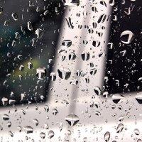 Окружающий нас мир в капле дождя :: Николай Сапегин