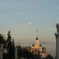 Луна :: Влад Малкин
