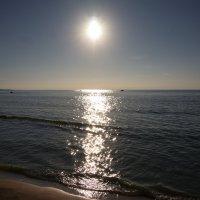 море и солнце :: Валентина Папилова