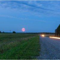 Вечерняя проселочная дорога :: Олег Марков
