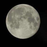 Луна :: Андрей Бурухин