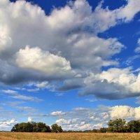 Осенних дней тревожное тепло... :: Лесо-Вед (Баранов)