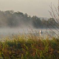 Туман на реке. :: Виктор Евстратов