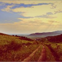 Дорога летним зноем :: galina tihonova