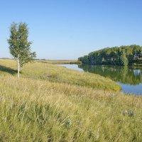 Степное озерцо #3 :: Виктор Четошников
