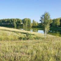 Степное озерцо #2 :: Виктор Четошников