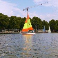 Озеро Маш в Ганновере :: Galina Belugina